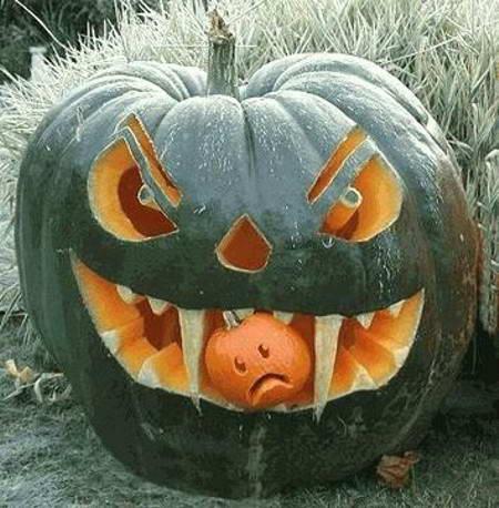 Pumpkin 05