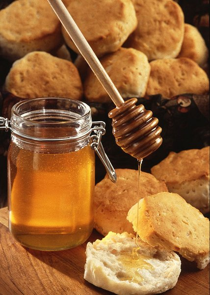 World's sweetest antibiotic? the five ways honey kills bacteria